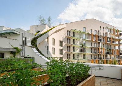 Living Garden – Seestadt Aspern